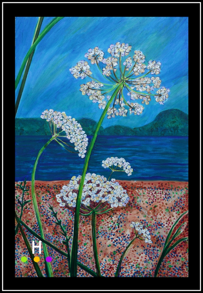 Yarrow at Hamilton Beach, Pender Island (2013) 24x36 web