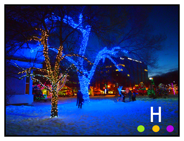City Hall Park at Christmas, Red Deer, Alberta, Canada