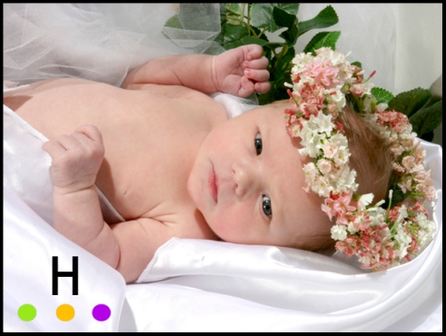 Baby photography in Red Deer, Alberta.