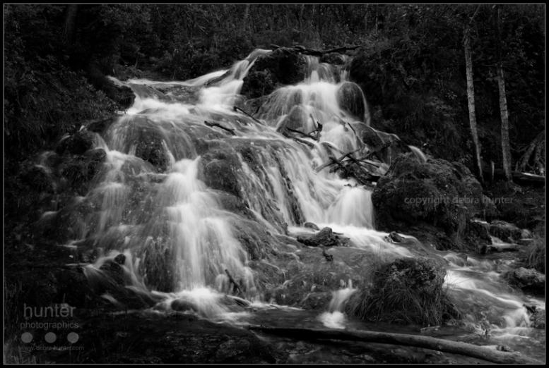 Big Hill Springs Provincial Park, AB, Canada