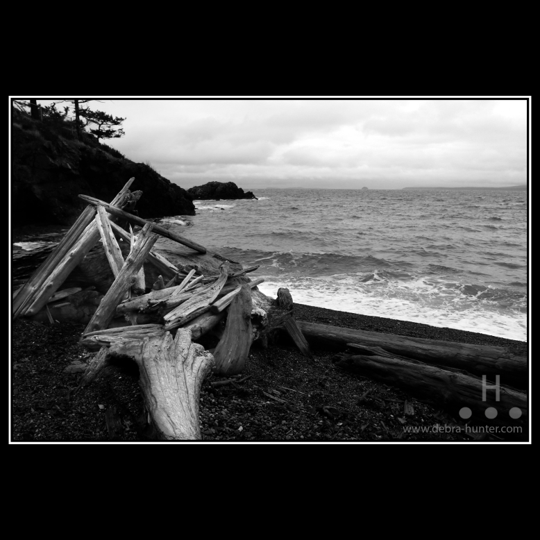 gowlland-point-2016_1398-bw
