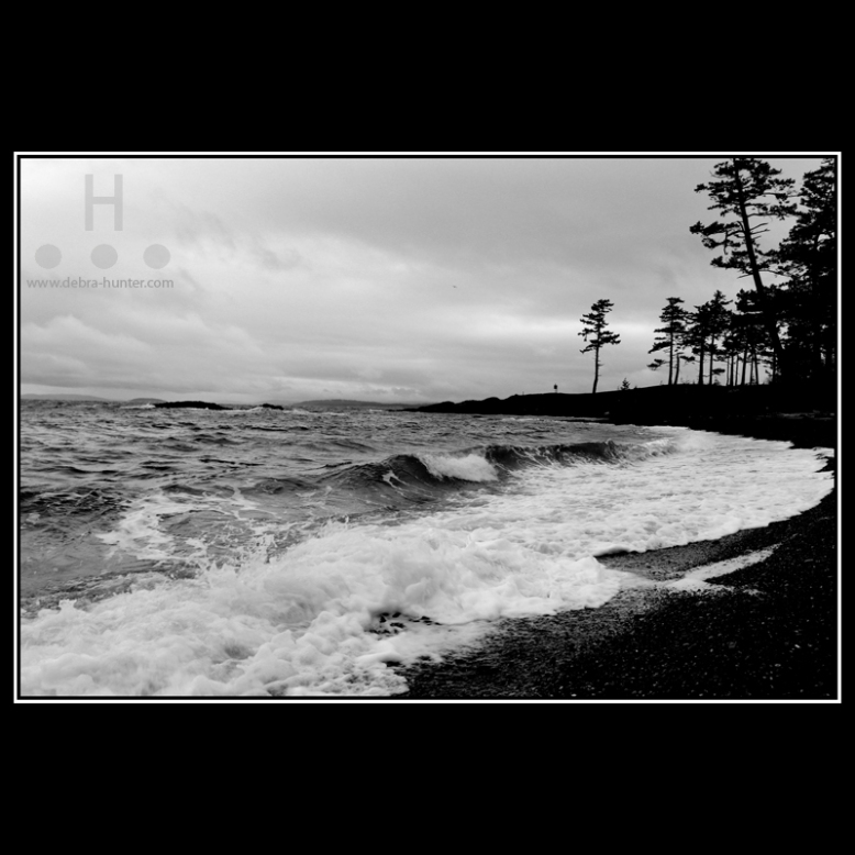 gowlland-point-2016_1421-bw