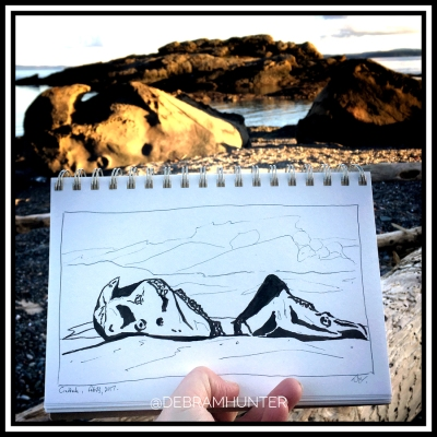 en plein air drawing at Craddock Drive on Pender Island, BC, Canada